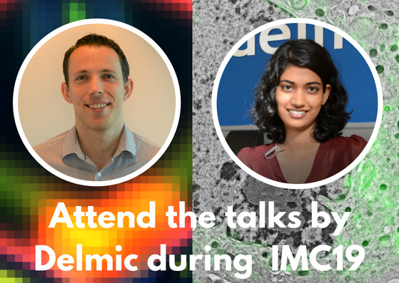 Attend the talks by Delmic during IMC19