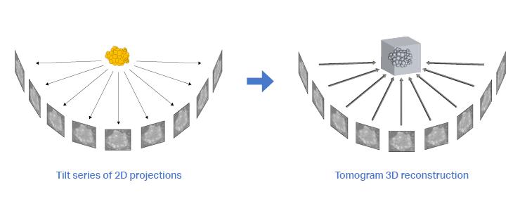 Tilt series alignment