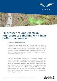 fluorescence-and-electron-microscopy-labelling-with-high-definition-context.jpg