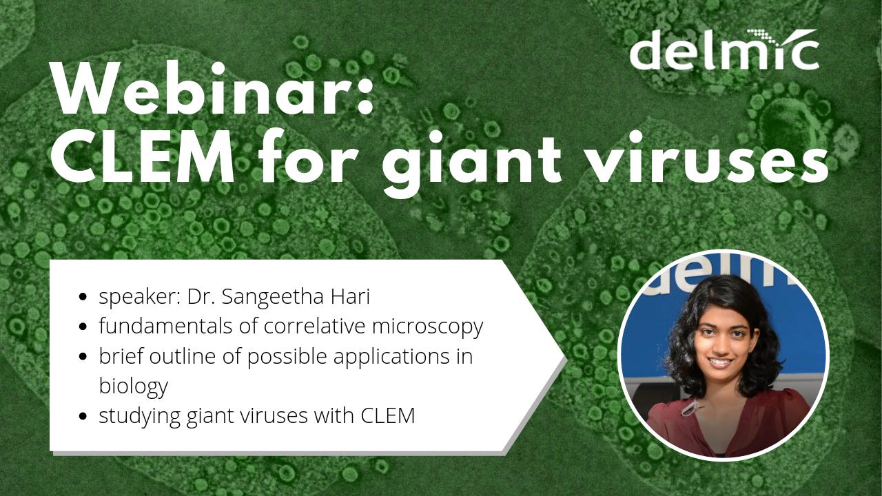 Webinar: giant viruses under (correlative light and electron) microscope