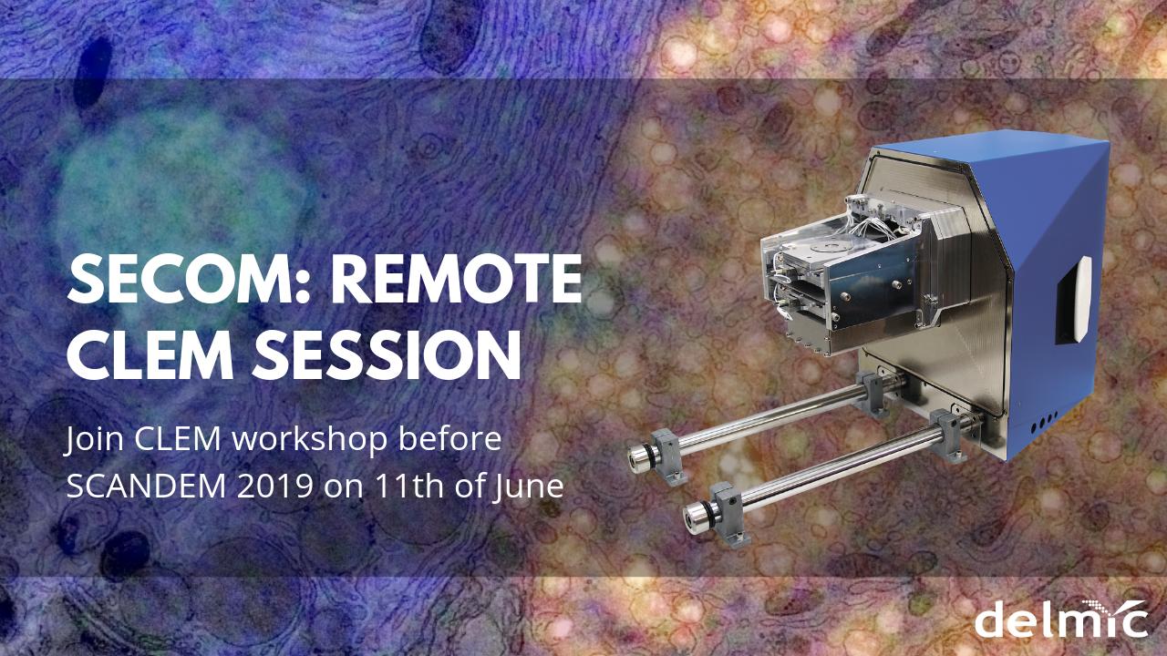 CLEM workshop at SCANDEM 2019