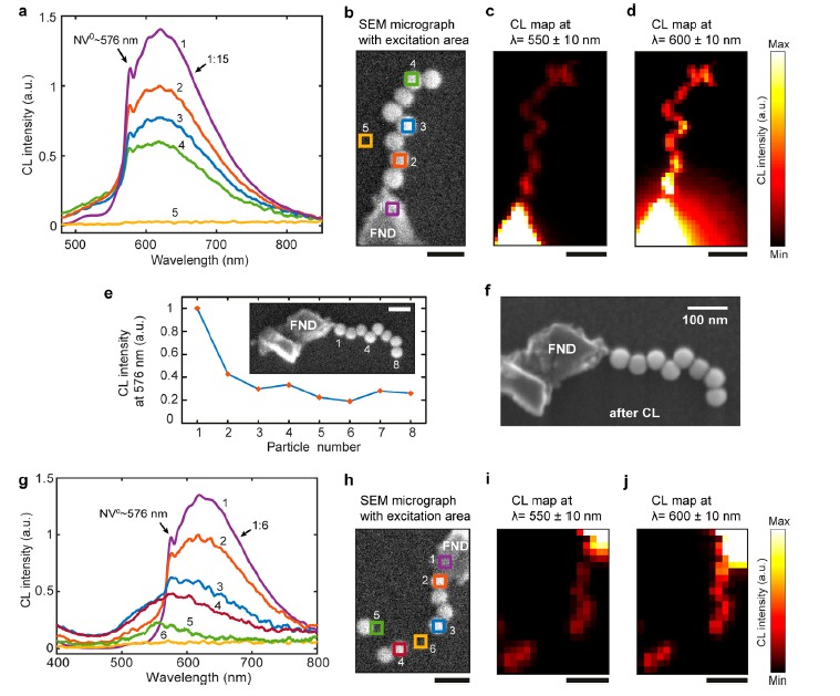 New possibilities for nanoscale light propagation with DNA-assembled plasmonic waveguides