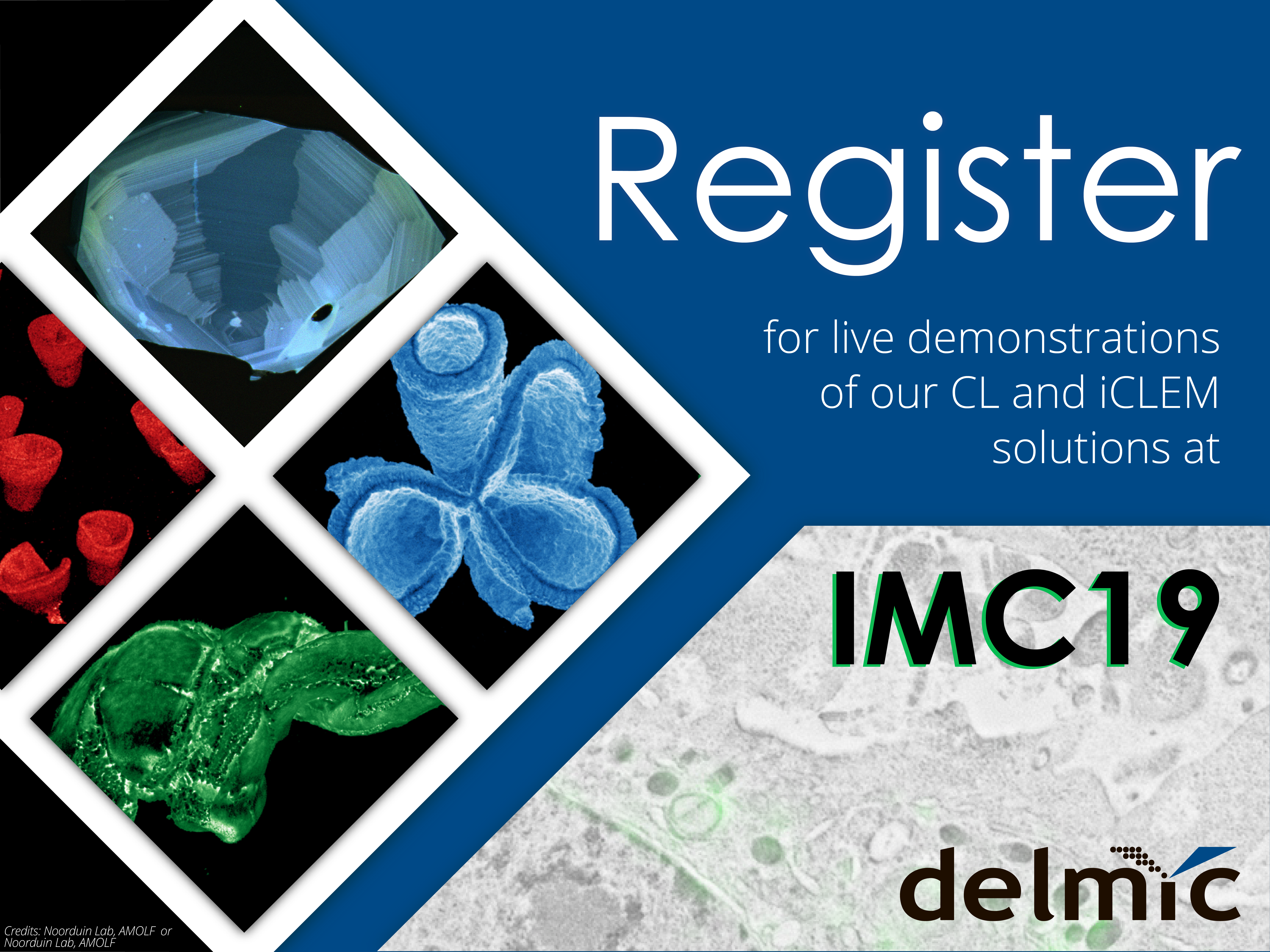 Delmic is coming to the IMC19: make sure to register for a demo!